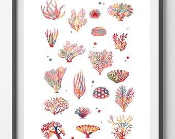 Sea Coral Watercolor Print, Sea life art corals collection poster, Wall Art, Deep Sea Corals illustration ocean life home decor Coral Reef