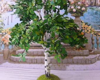 Birch. Tree for garden. Dollhouse Landscape. Miniature Dollhouse. 1:12 Scale