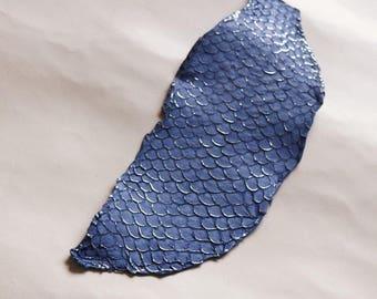 Large TILAPIA skin silver Twilight Blue