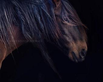 Horse Art 8x10 print Rustic decor Fine Art Photography Horse Art print Cabin Decor living room decor Wild Horses Oklahoma Mustangs