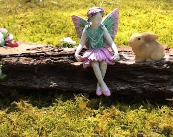 Fairy Eve and Her Bunny Friends