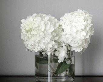 Hydrangea Print, Still Life Photography, White Flowers Print,Green Flower Photography,Hydrangea Flower Art,Fixer Upper Decor,Flower Wall Art