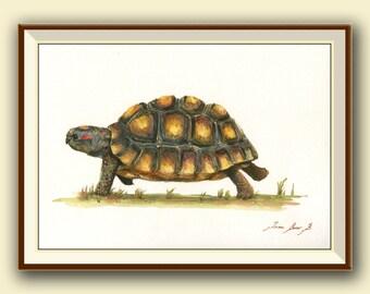 PRINT- Red Footed Tortoise - Tortoise south america Turtle -Tortoise art wall painting watercolor original animal -  Art Print by Juan Bosco