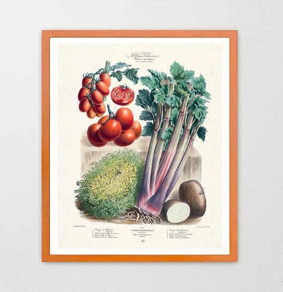 The Vegetable Garden - Garden Art - Garden Illustration - Garden Poster - Kitchen Poster - Kitchen Art - Tomatoes - Food Poster - Food Art