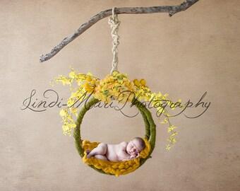 Digital Backdrop Newborn Yellow Mossy Swing