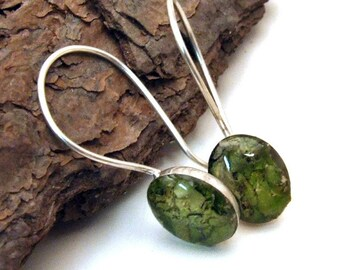 Oval Lichen Earrings on posts or wires - resin and sterling silver - Nature Jewelry from the Captured Collection