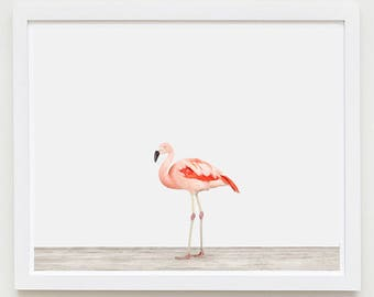 Animal Art Print. Flamingo No. 1. Bird Animal Wall Art. Animal Decor.