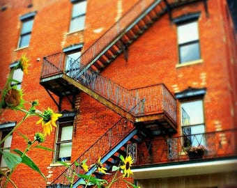 Fire Escape Photography| Industrial| Rustic Home Decor| Color| Sunflower|  Architecture| Oversized Prints |Large Home Decor| Photography