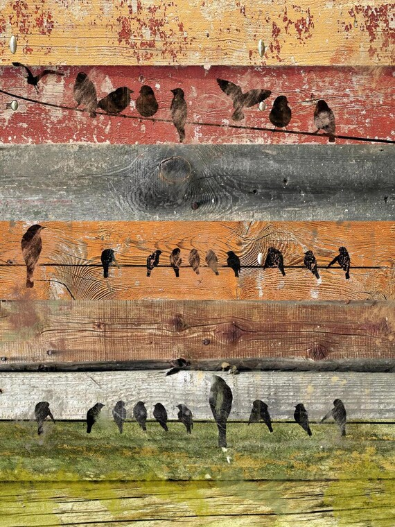 Birds composition II. Canvas Print by Irena Orlov 24x36""