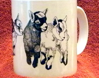 11 Ounce White Ceramic Mug with Pygmy Goat Drawing - Pygmy Posse
