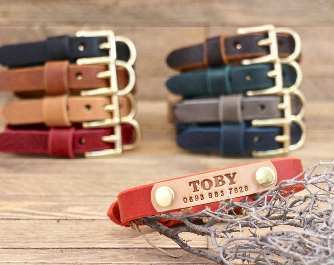 Small dog collar,  3/4 collar, Brass, FREE ID TAG, Leather collars, Handmade collars, Dog gift, Red collar, Colours  collar, Small dogs.