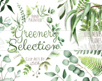 Watercolor Greenery Clipart Leaf Clipart Eucalyptus Woodland Clip Art Frame Wreath Clipart Forest Leaves Fern Illustration Greenery Vector
