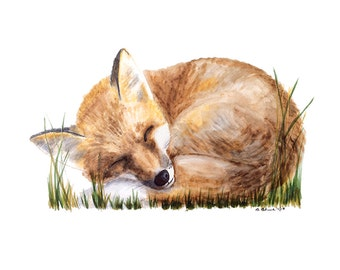 Fox Art for Woodland Nursery, Nursery Art Fox Print, Woodland Art for Baby Girl Room Decor or Baby Boy Wall Art, Fox Watercolor