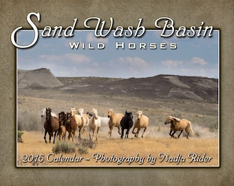 ON SALE 75% OFF 2016 Sand Wash Basin Wild Horses Wall Calendar, wild mustang photos, wild horses running, wild stallions, Northwest Colorado