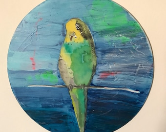 Cheeky budgie round painting - original artwork on board.
