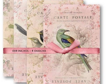 Bird Carte Postale Digital Collage Sheet Download -461- Digital Paper - Instant Download Printables