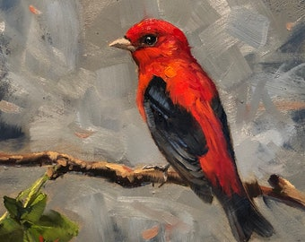 """Scarlet Tanager, by Krista Eaton, original, art, 6"""" x 6"""", bird, birds, decorative, oil, painting, blossoms, spring"""