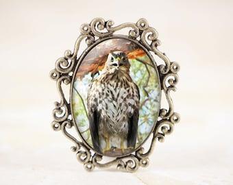 Hawk Brooch - Bird of Prey Jewelry, Raptor Jewelry, Bird Lover Gift, Bronze Bird Jewelry Brooch, Hawk Jewelry Pin, Nature Brooch, Hawk Bird