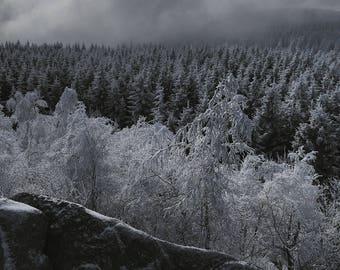 Spectres de l'hiver