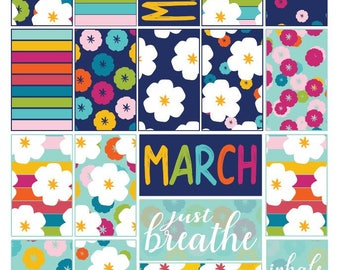 Classic March Spring Colorful Floral Full Box Printable Stickers for Classic HP Layout