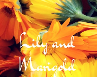 Lily and Marigold: Poem PDF