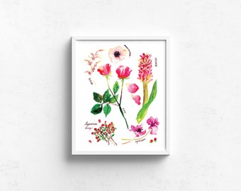 Watercolor Art Giclee Print - Botanical Rainbow series in Red