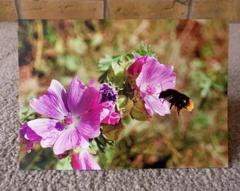 Bumble Bee and flowers - Greeting card