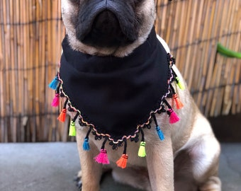 Rainbow Tassle over the collar bandana