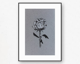 Black & White Floral Rose Drawing On Grey Paper Original By Britt Fabello