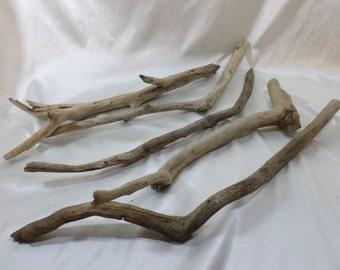 Bulk Driftwood - 5 Round Driftwood Pieces - Craft Supplies - Drift Wood
