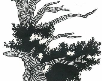 Linocut Print - BRISTLECONE PINE - Black and White Desert Landscape Print 9x13 - Ready to Ship