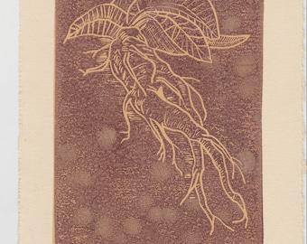 Mandrake Root  |  Linocut