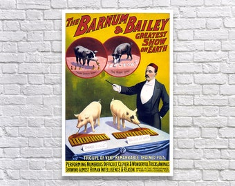 Remarkable Trained Pigs, 1898. Vintage Poster Reproduction Print. Circus, Carnival, Sideshow, Animals, Advertising, Poster Art, 1800s.