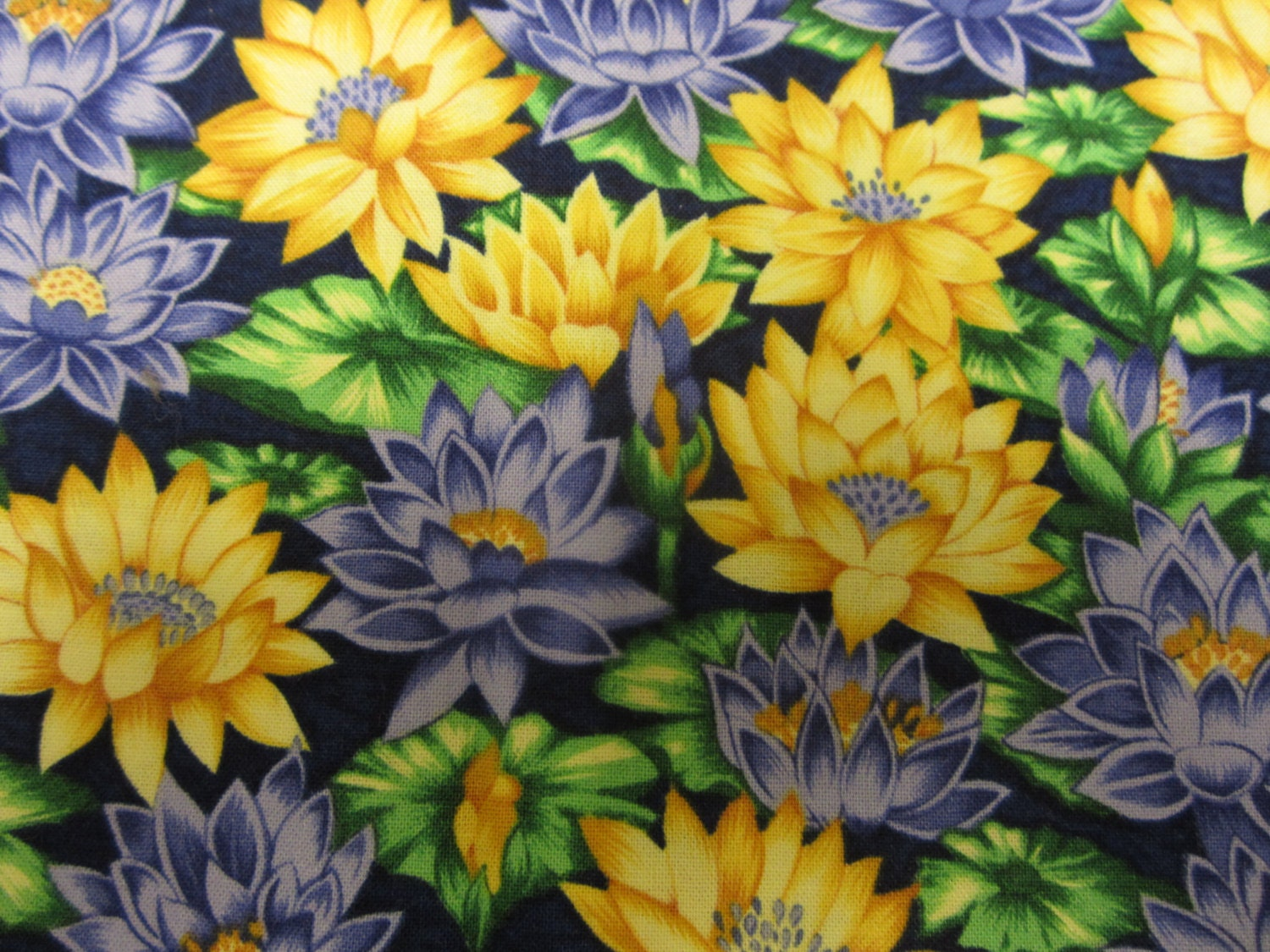Northcott flower of the month july waterlily 2044 ro gregg sold by bluebellsewingcraft izmirmasajfo