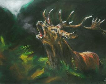 Red Deer art, Stag chalk pastel, Stag print, Nature art