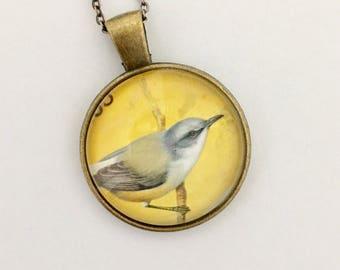 Bird Postage Stamp Glass Pendant Necklace