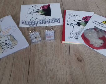 Spearshake birthday set