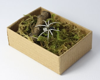Spider in a box