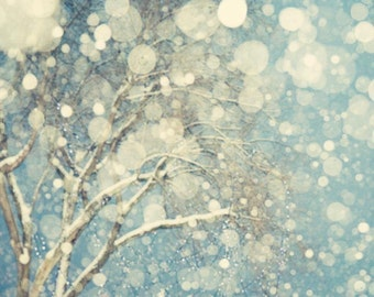 Winter Landscape Photography, Abstract Tree Wall Art Print, Abstract Snow Photograph, Tree Print, Blue Art, 8x8 - Snowblind