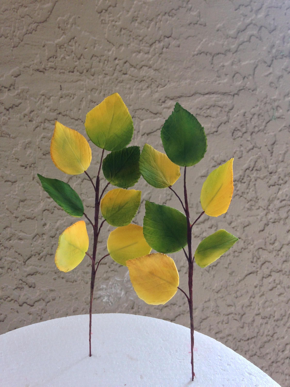 Aspen Leaves Gumpaste Yellow And Green Aspen Leaves Sugar Flower