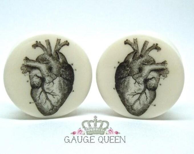 "Anatomical Heart Plugs / Gauges. 4g /5mm, 2g /6.5mm, 0g /8mm, 00g /10mm, 1/2"" /12.5mm, 9/16"" /14mm,5/8"" /16mm,3/4"" /19mm,7/8"" /22mm,1"" /25mm"