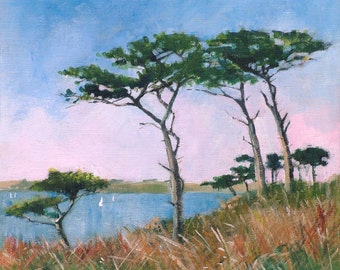 Giclee print, original Cornish seascape, coastal art, coastal footpaths, Carricknath point, St  Mawes, Scots pines, made in Cornwall