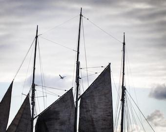 Dark Sailing Boat Print - Irish Ship Fine Art Photograph - Grey Sails and Sky Art