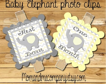 Baby First year photo clip banner just born to 12 months first birthday 12 month banner Elephant first year banner party RIBBON INCLUDED