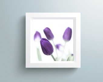 Flower Art, Extra large Art Print Spring Flower - Purple Tulips Photography - Flower Photography - Nature Photo - Modern Art -