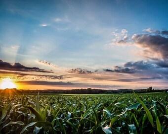 Fine Art Print // Indiana Sunrise // HDR // Photography