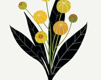 Black & Gold Seed Pods - Fine Art Print 11x14