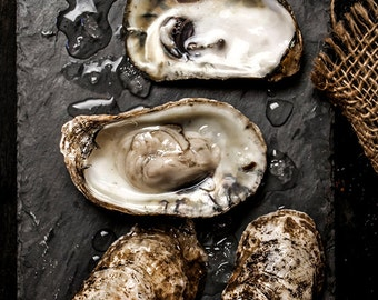 Food Art, Food Photography, Oysters on the Half Shell, Oyster Art, Oysters, Kitchen Decor, Wall Art, Home Decor, Restaurant Art