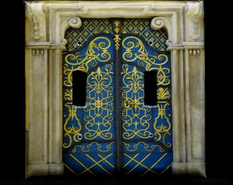 Double Switchplate Cover - Blue and Gold Doors