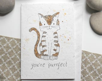 You're Purrfect Cat - Eco-friendly A6 Blank Card